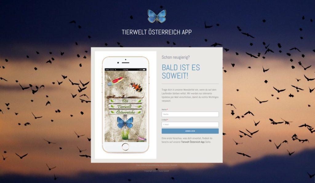 Screenshot Landing Page