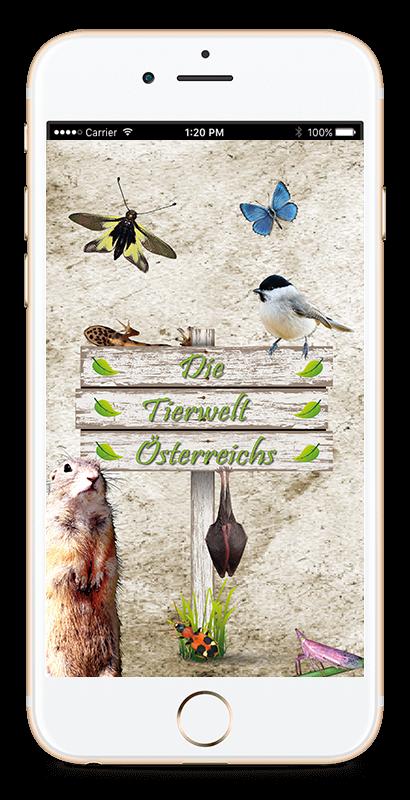 Splash Screen - Tierwelt Österreichs App